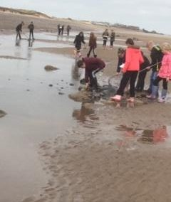 Year 5 Spurn Point Trip